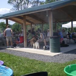 2009 picnic 004