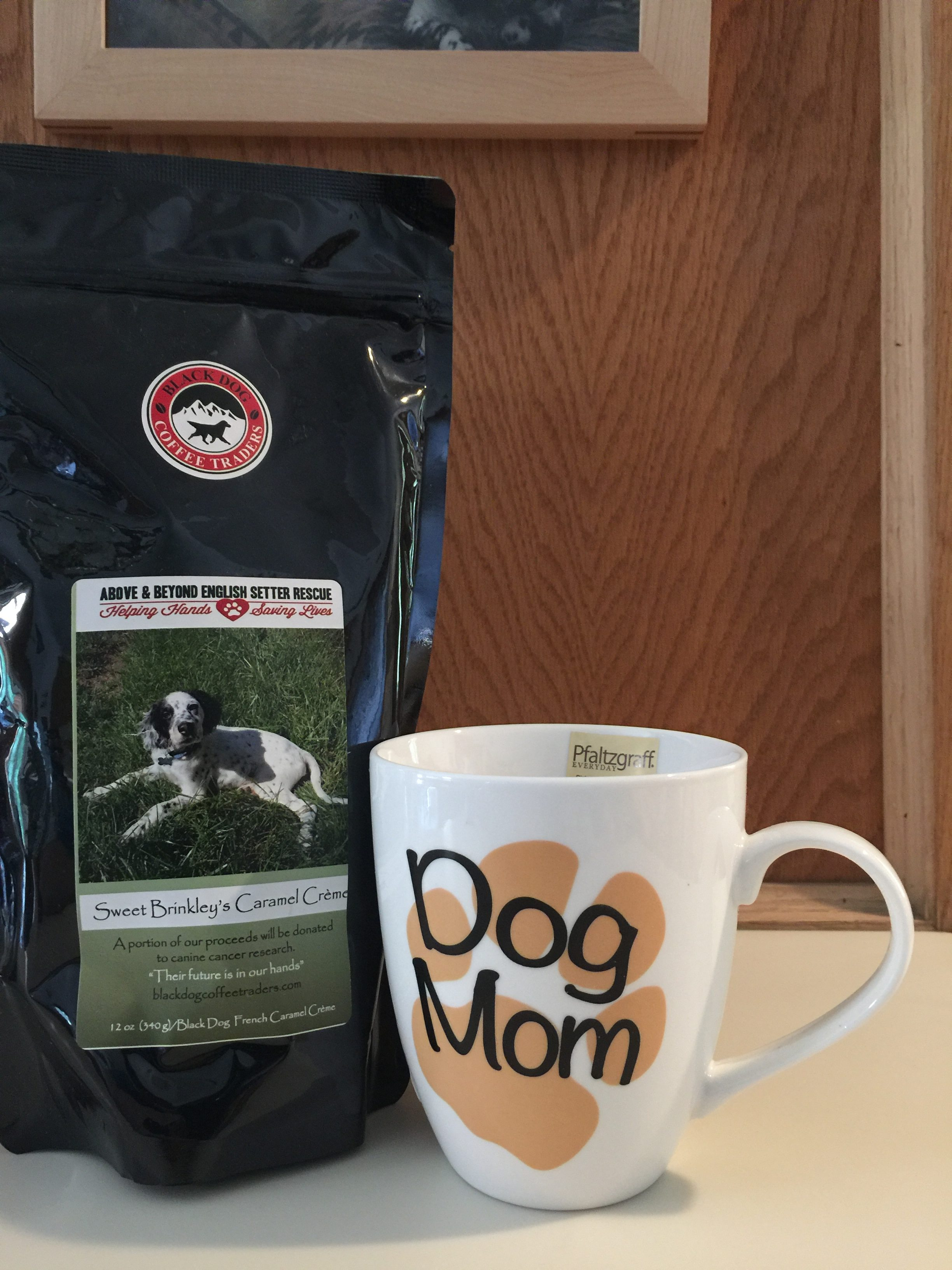 One Dollar Raffle Items Above And Beyond English Setter